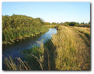 A peaceful lode at Isleham in the fens